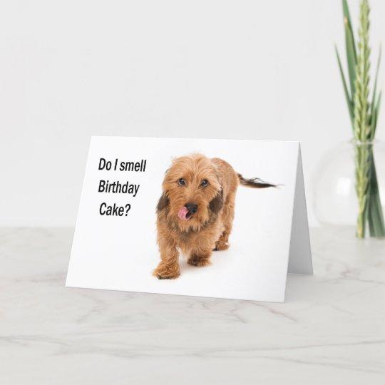 Birthday Card Dachshund Dog Smelling Cake