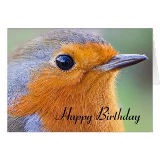 Birthday card European robin Erithacus rubecula