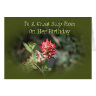 Birthday Card For Stepmom