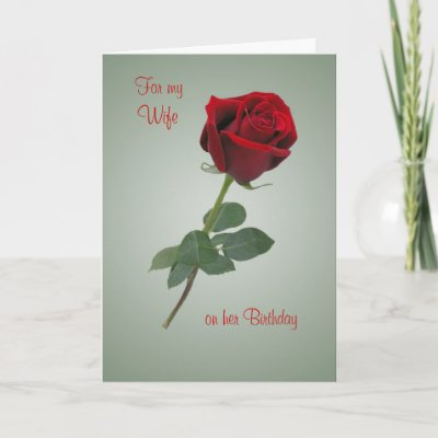 Birthday card for Wife with Red rose. from Zazzle.com