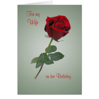 Birthday card for Wife with Red rose.