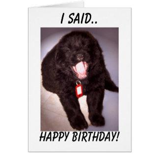 Birthday Card Newfoundland Puppy