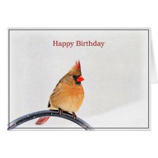 Birthday Card with a female Cardinal