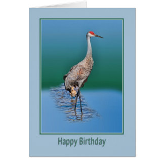Birthday Card with Baby Sandhill Crane