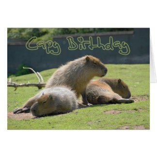 Birthday Card with Capybara