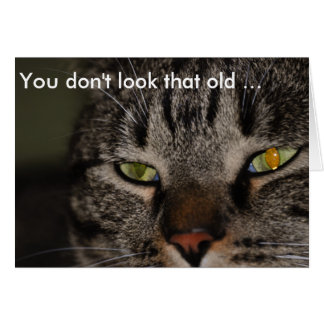 Birthday Card with Cat: You don't look that old …