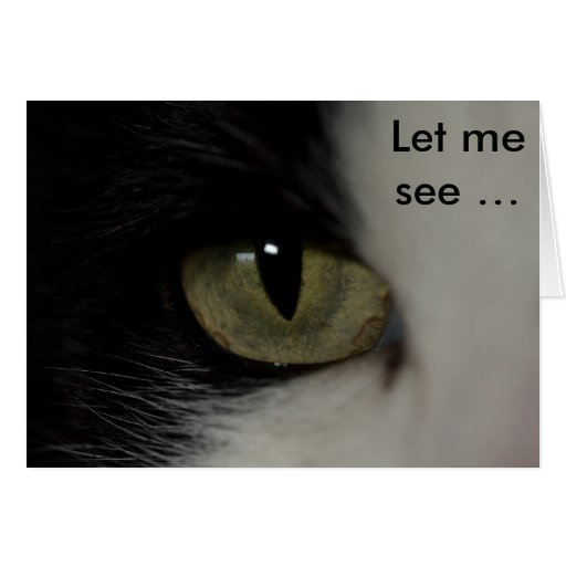 birthday card with cat 39 s eye let me see zazzle. Black Bedroom Furniture Sets. Home Design Ideas