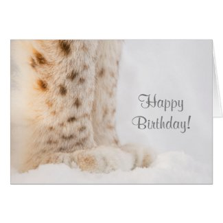 Birthday card with soft golden lynx paws in snow