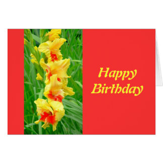 Image result for happy birthday in red yellow green