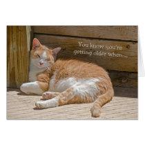 Birthday Cat Nap Card