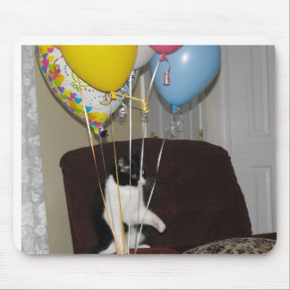 Birthday cat  says this is  my balloons mouse pad