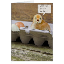 Birthday Chick for Mom Card