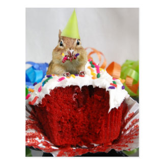 Birthday Chipmunk Post Card