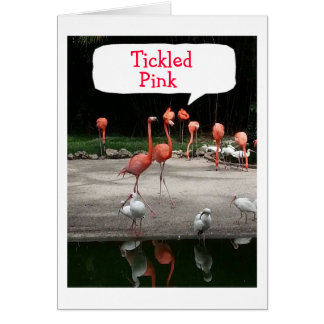 "BIRTHDAY COMPLIMENT FLAMINGOS ARE ""TICKLED PINK"" CARD"