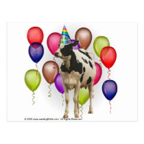 Birthday Cow Theme Party Postcard