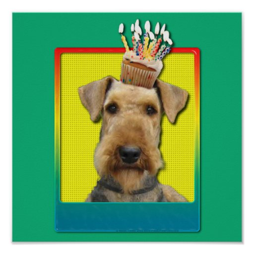 Birthday Cupcake - Airedale Poster