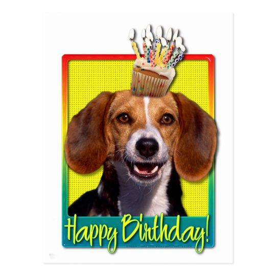 Birthday Cupcake Beagle Postcard