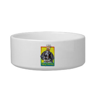 Birthday Cupcake - Bluetick Coonhound - Chuck Cat Bowl