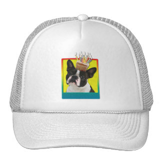 Birthday Cupcake - Boston Terrier Trucker Hat