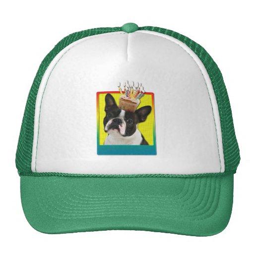 Birthday Cupcake - Boston Terrier Trucker Hats