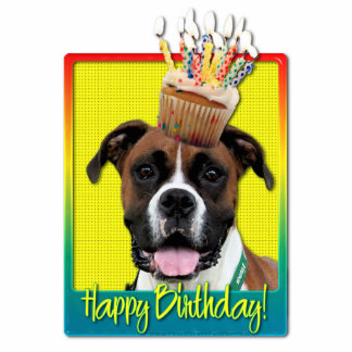 Birthday Cupcake - Boxer - Vindy Photo Cut Outs