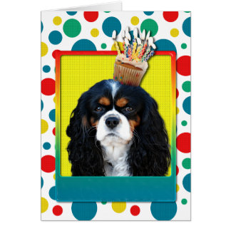 Birthday Cupcake - Cavalier - Tri-Color Greeting Cards