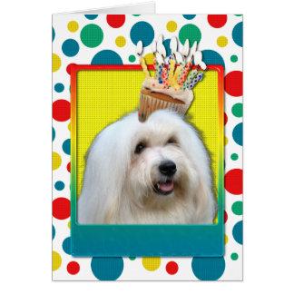 Birthday Cupcake - Coton de Tulear Card