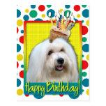Birthday Cupcake - Coton de Tulear Post Cards