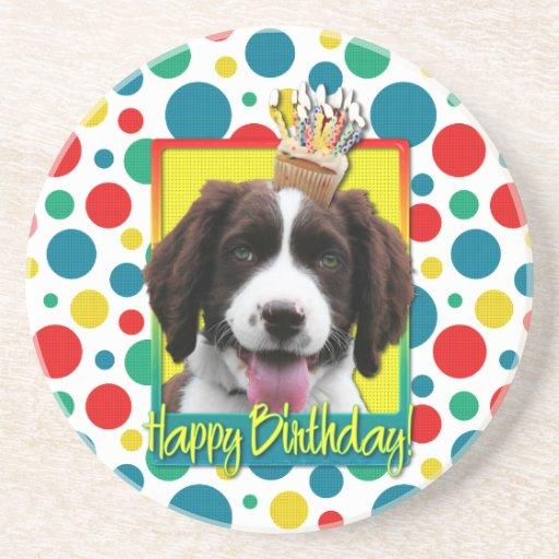Birthday Cupcake -English Springer Spaniel -Baxter Beverage Coasters
