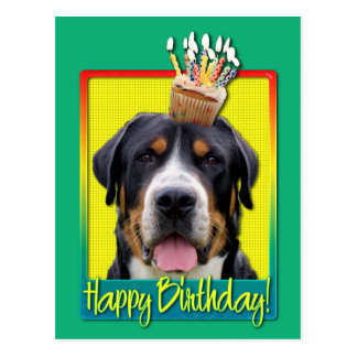 Birthday Cupcake - Greater Swiss Mountain Dog Postcard