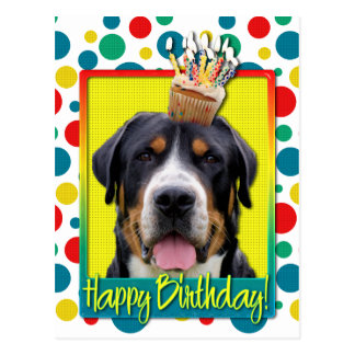Birthday Cupcake - Greater Swiss Mountain Dog Postcard