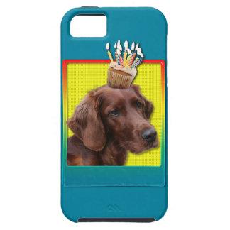 Birthday Cupcake - Irish Setter iPhone SE/5/5s Case