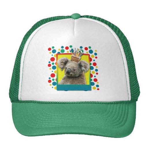Birthday Cupcake - Koala Hats