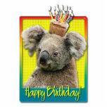 Birthday Cupcake - Koala Photo Sculptures