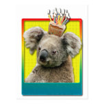 Birthday Cupcake Koala Postcard