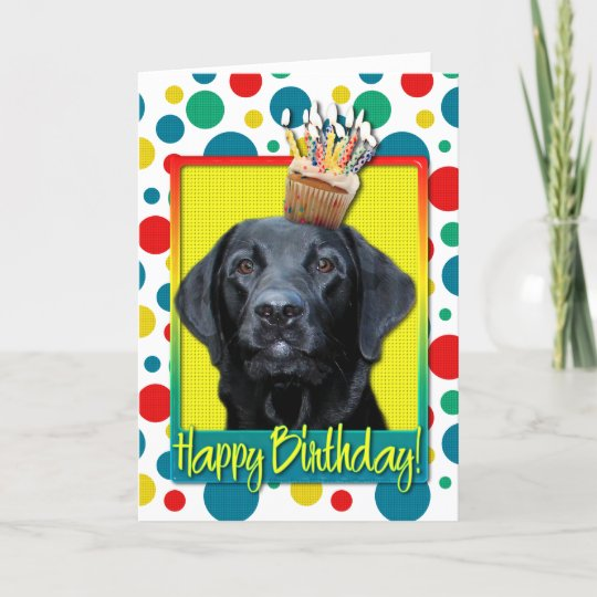 Birthday Cupcake Labrador Black Gage Card Zazzle