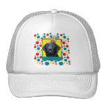 Birthday Cupcake - Labrador - Black - Gage Hat