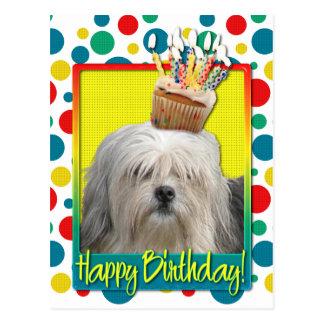 Birthday Cupcake - Lowchen Postcard
