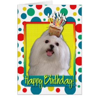 Birthday Cupcake - Maltese Card