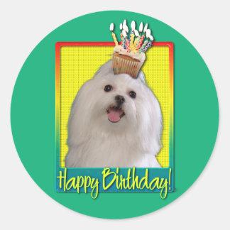 Birthday Cupcake - Maltese Classic Round Sticker