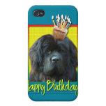 Birthday Cupcake - Newfoundland iPhone 4/4S Cases