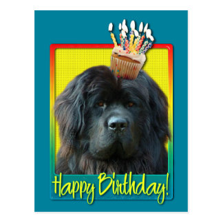 Birthday Cupcake - Newfoundland Post Cards