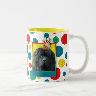 Birthday Cupcake - Newfoundland Two-Tone Coffee Mug