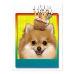 Birthday Cupcake - Pomeranian Postcard