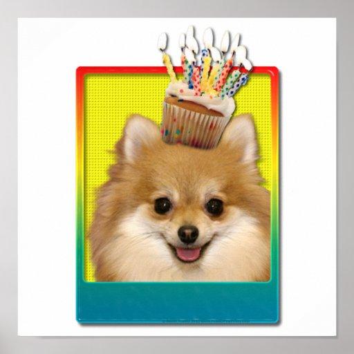 Birthday Cupcake - Pomeranian Poster