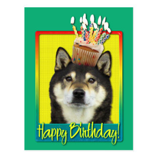 Birthday Cupcake - Shiba Inu - Yasha Postcard