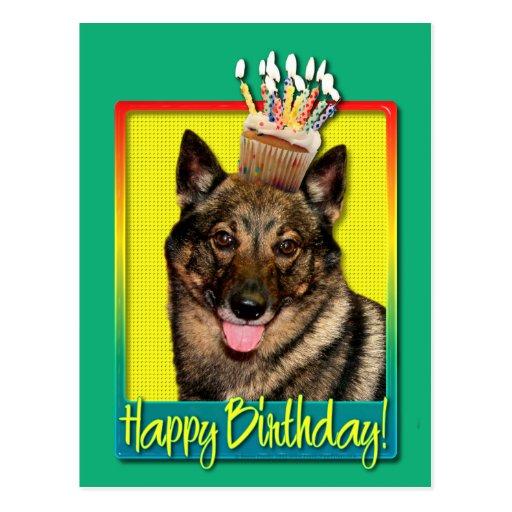 Birthday Cupcake - Vallhund Post Cards