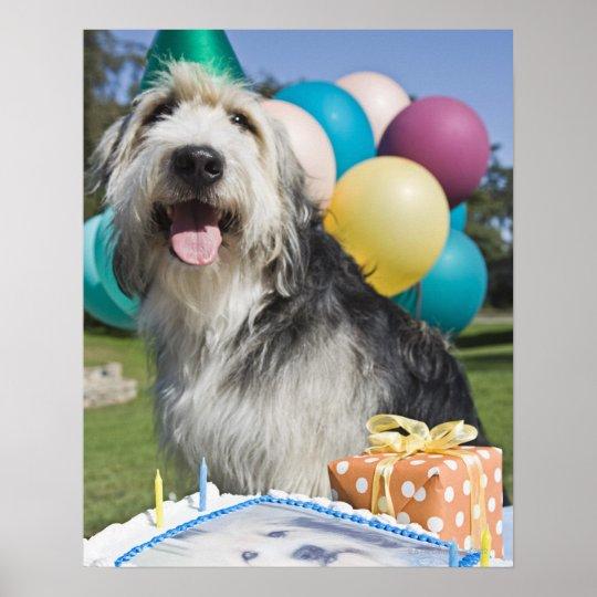 Birthday dog poster