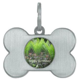 Birthday Fern Garden Pet ID Tags