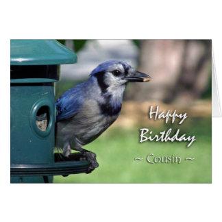 Birthday for Cousin, Blue Jay on Bird Feeder Card